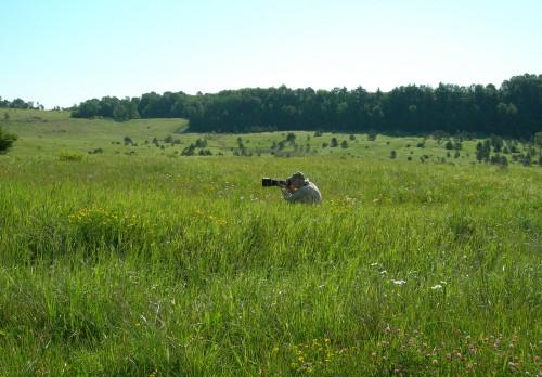 狩猟地区のうち400エーカー(約 ...